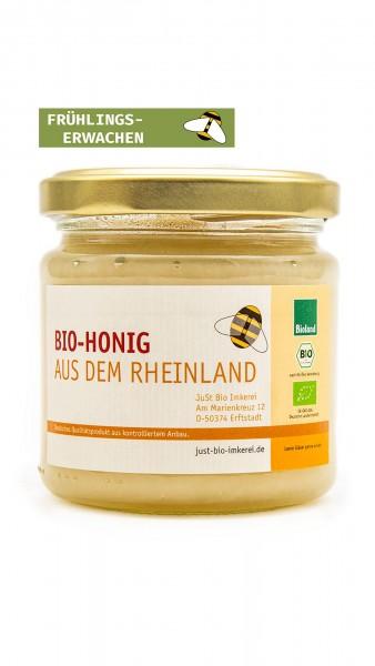 Bio Honig Frühlingserwachen